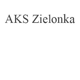 Naprawa AKS Zielonka
